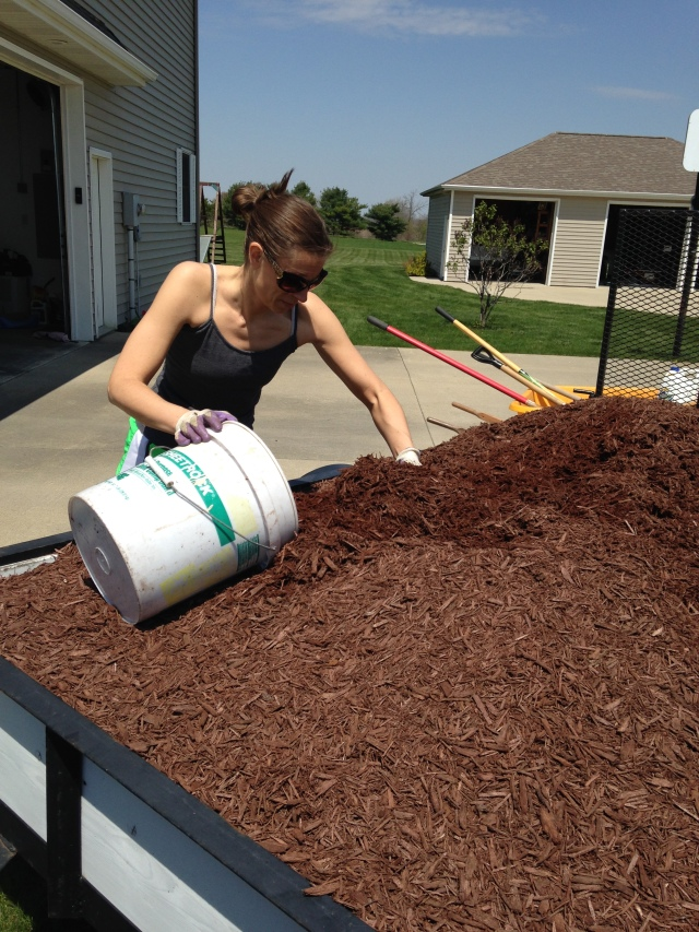 I actually enjoy the back-breaking work of spreading mulch. Not so much the sunburn I got from it, though.